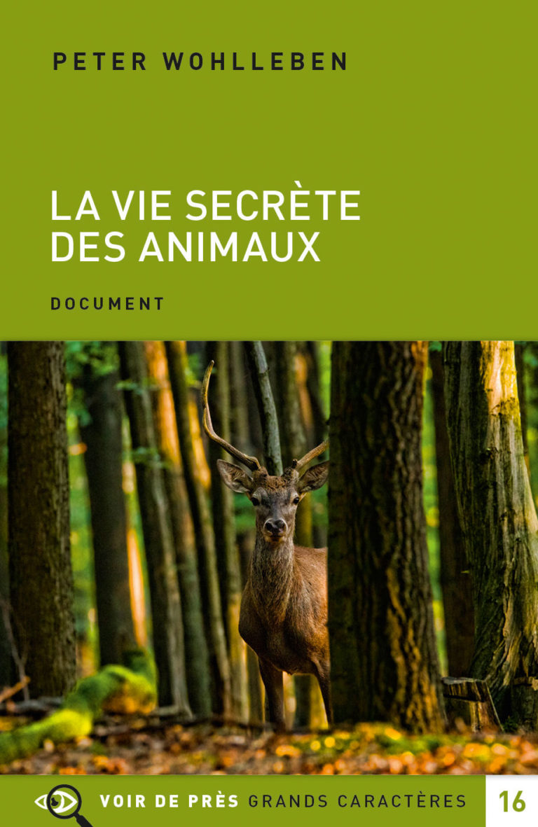 Couverture de l'ouvrage La Vie secrète des animaux