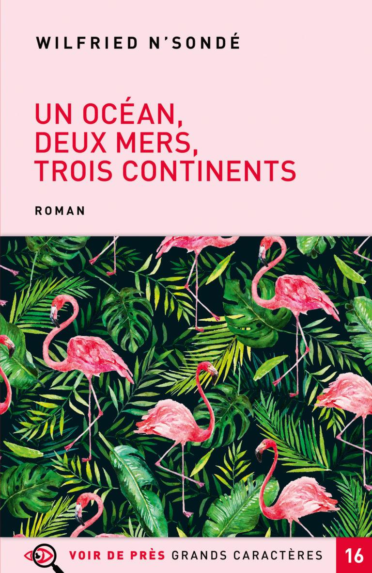Couverture de l'ouvrage Un océan, deux mers, trois continents